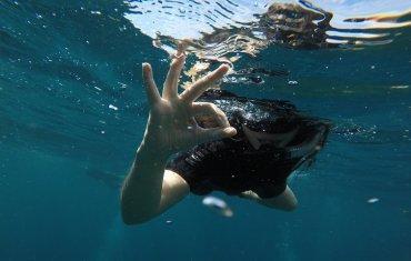 Bali's underwater world is just fine!