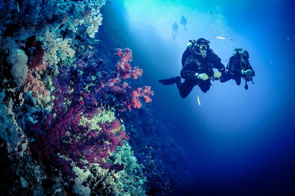Pos 1 dive spot in Menjangan