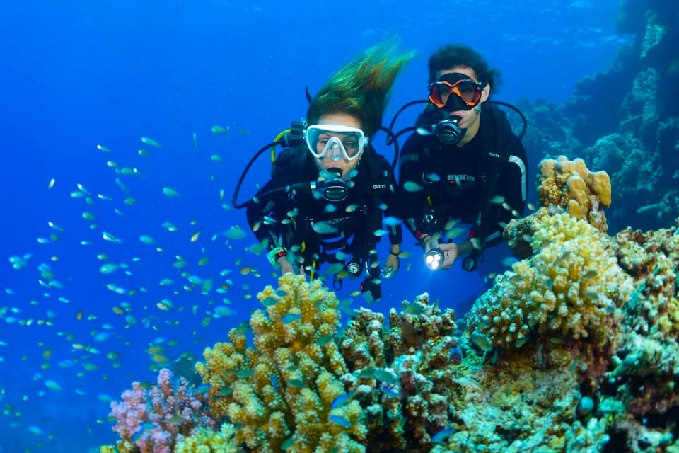 Advanced Diving Course SSI or PADI in Bali