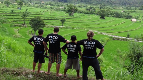 Diving safari in Bali-stop by Jaltiluwih rice fields
