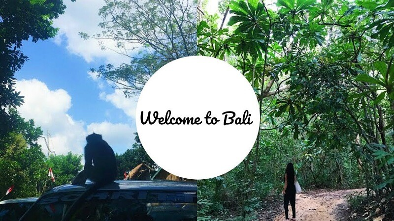 Welcome to Bali by Nico Dives Cool